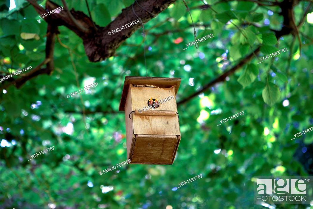 Stock Photo: Bird House  LLeida, Spain.