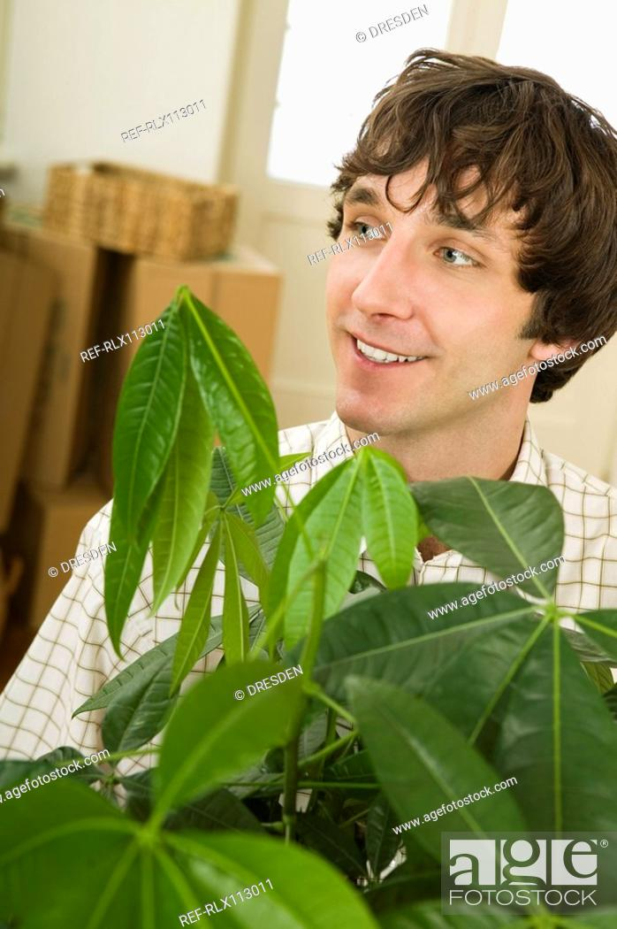 Stock Photo: Man carrying house plant.