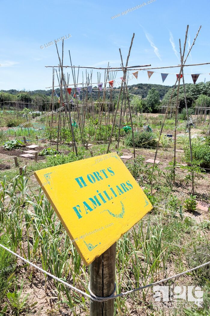 Imagen: agroecological farm next to the Natural Area of the mouth of the river Gaià and the natural beach of Tamarit. By booking in advance.