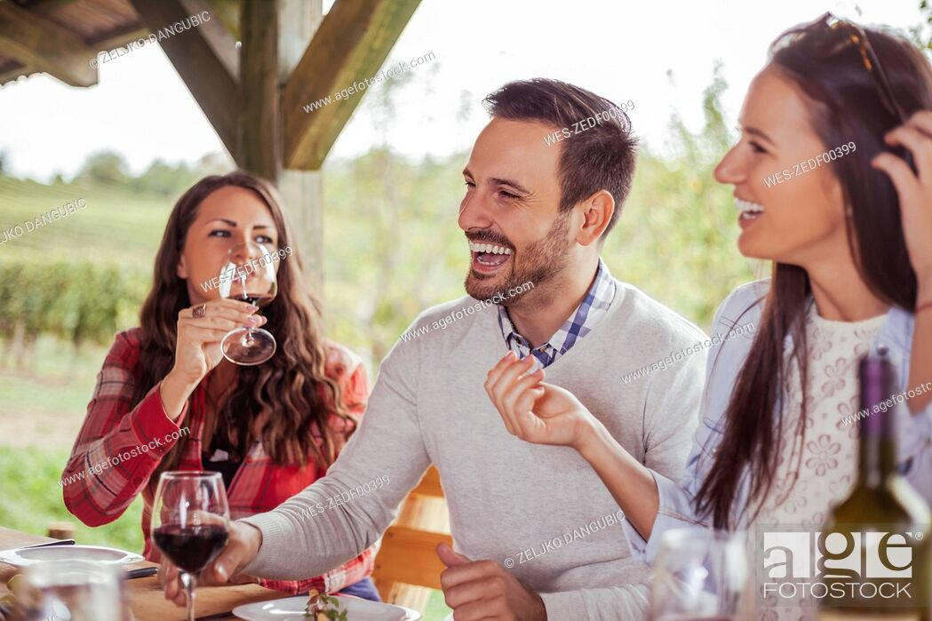 Stock Photo: Friends socializing at outdoor table with red wine.