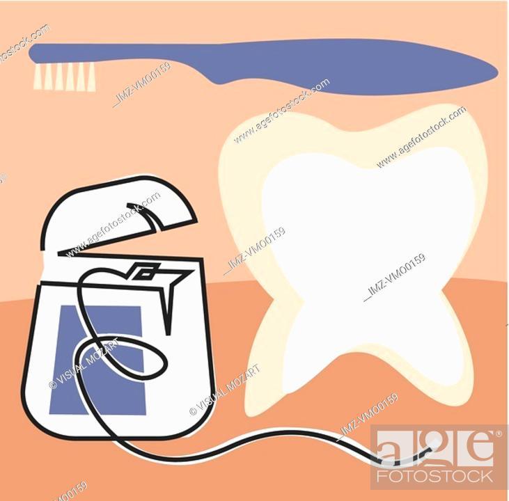 Stock Photo: Dental floss, toothbrush and molar.
