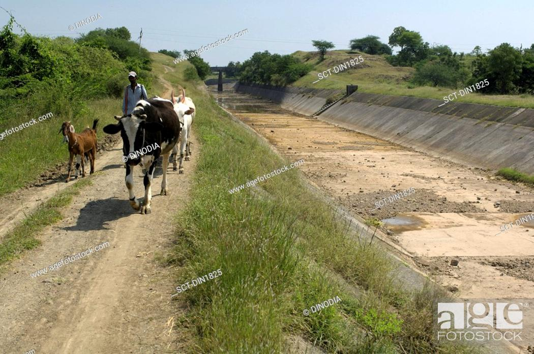 Stock Photo: View of the Government Canal at Ralegan Siddhi near Pune , Maharashtra , India.
