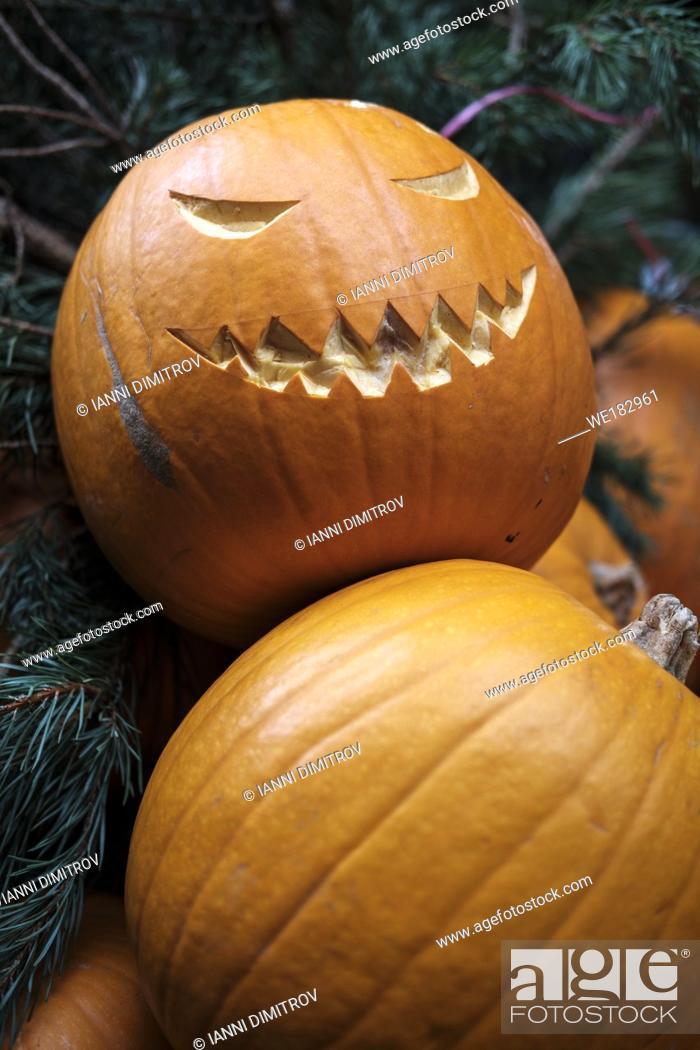 Stock Photo: England, London- Halloween carved pumpkins on sale.