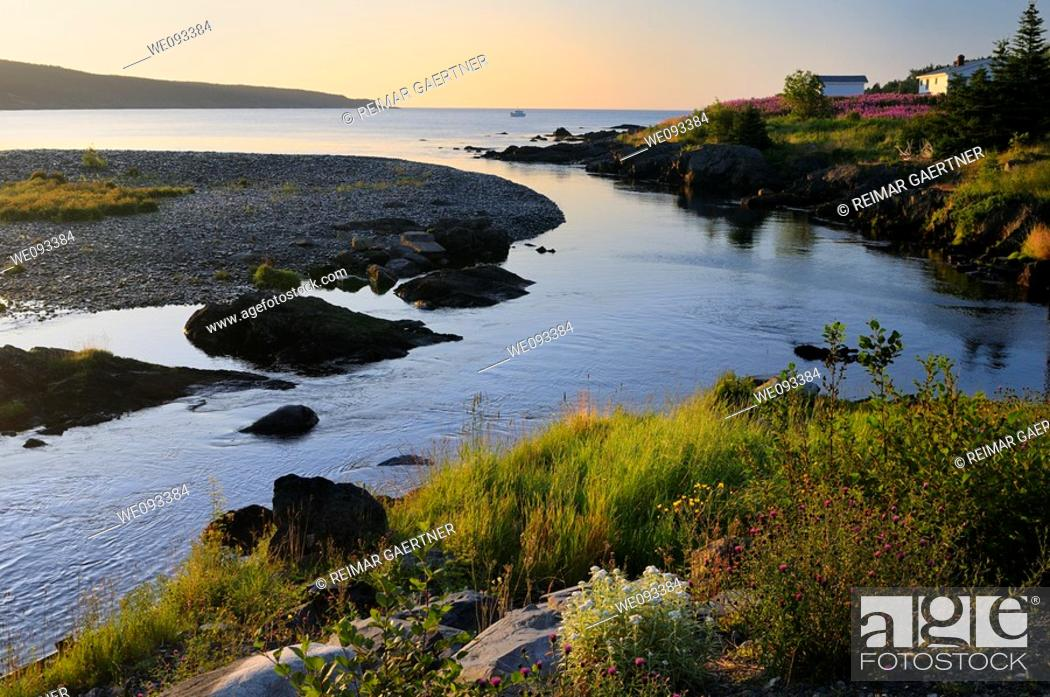 Stock Photo: Wildflowers along Mobile River at sunset with a boat in the Bay on Avalon Peninsula Newfoundland.