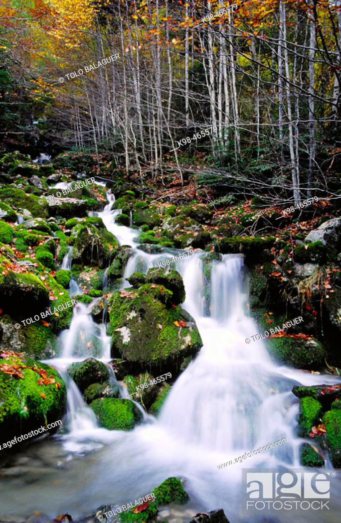 Stock Photo: La Capradiza. Añisclo valley. Protection area of Ordesa NP and Monte Perdido. Pyrenees. Huesca province. Aragon. Spain.