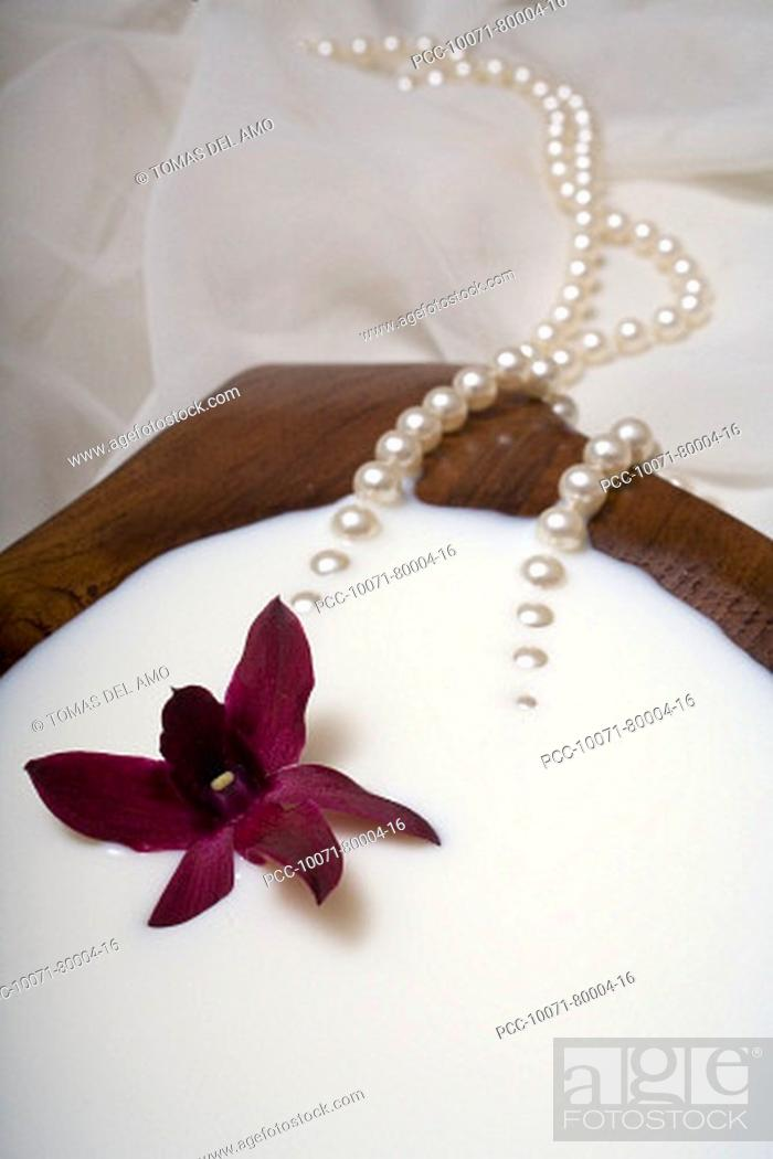 Stock Photo: Spa elements, koa bowl filled with milk, garnished with an orchid and a pearl necklace.