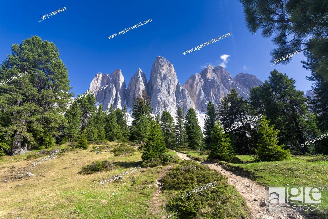 Imagen: The Odle peaks from Malga Glatsch, Puez Odle, Dolomites, Funes, Bolzano province, South Tyrol, Italy.