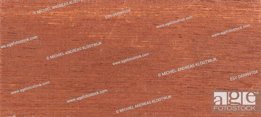 Stock Photo: Wood background - Wood from the tropical rainforest - Suriname - Cedrela odorata.