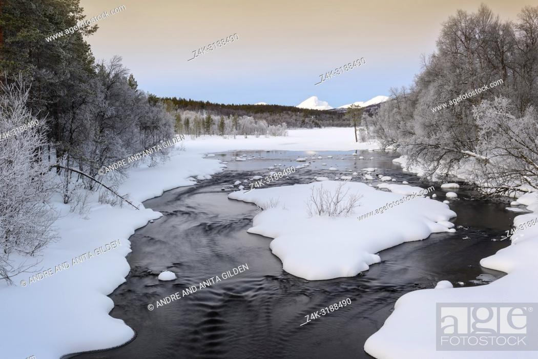Imagen: Stream flowing in forest, during winter and Polar night, Norway.