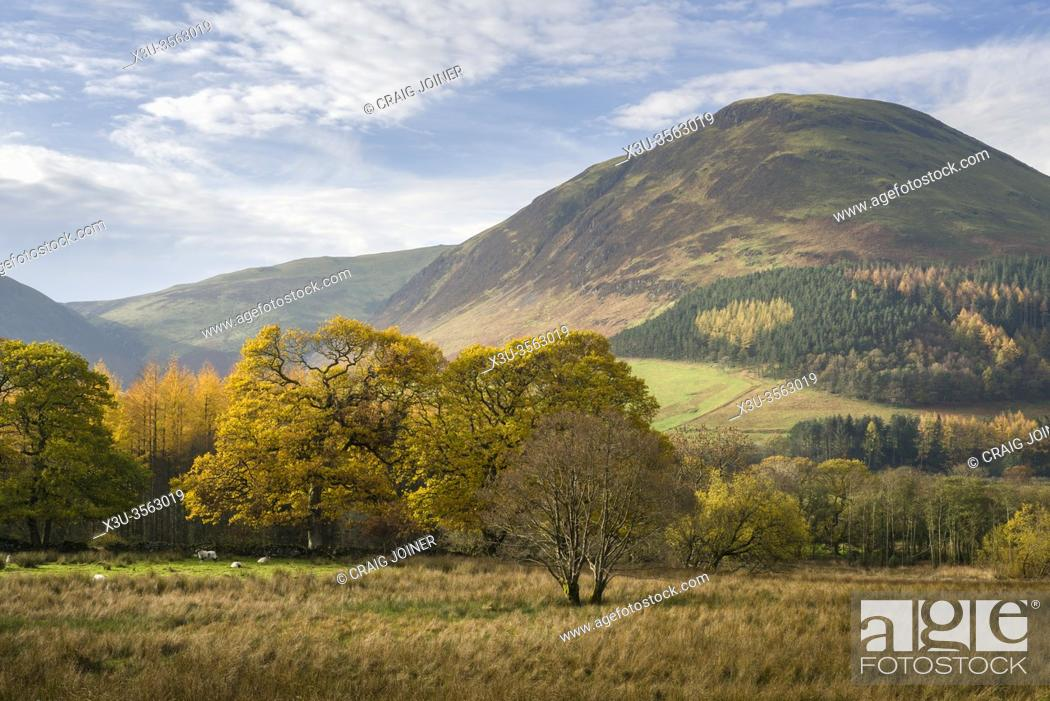 Stock Photo: Carling Knott in autumn at Loweswater in the Lake District National Park, Cumbria, England.