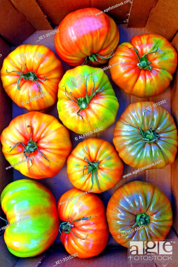 Stock Photo: tomatoes, Fira de la Candelera 2020, Molins de Rei, Catalonia, Spain.