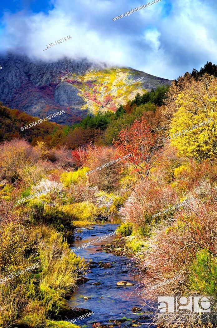 "Stock Photo: Lillas river in autumn at the Beech wood """"Hayedo de Tejera Negra"""" Nature Reserve, in the township of Cantalojas. Sierra de Ayllon."