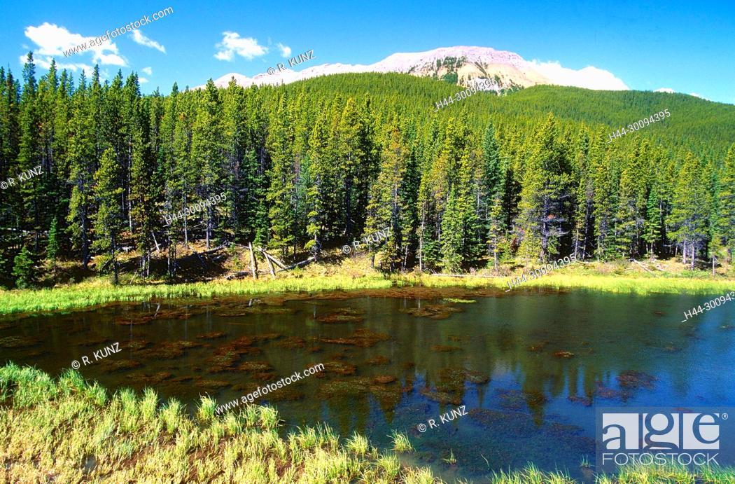 Stock Photo: Mountain lake, coniferous forest, Powderface Trail, Kananaskis Country, Province of Alberta, Canada.