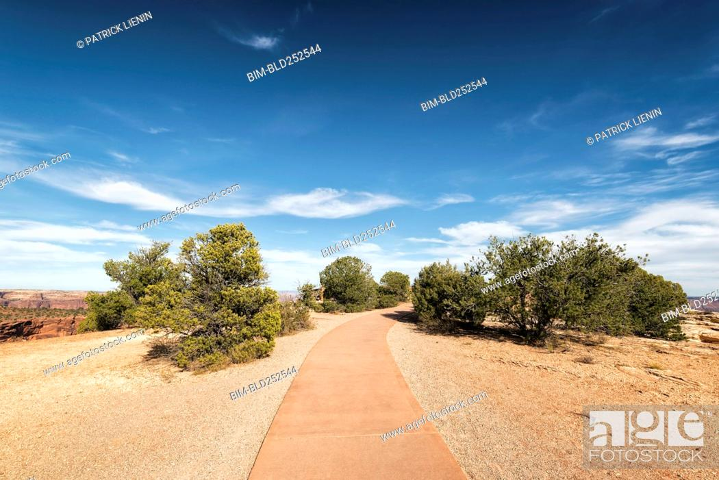 Stock Photo: Path in sunny park.