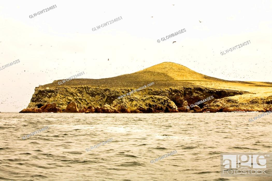 Stock Photo: Birds flying over an island, Ballestas Islands, Paracas National Reserve, Paracas, Ica Region, Peru.