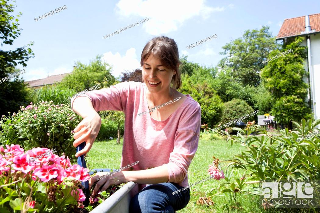 Stock Photo: Smiling woman in garden planting flowers.