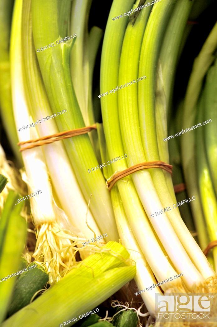 Stock Photo: Spring garlic. La Boqueria market, Barcelona, Catalonia, Spain.