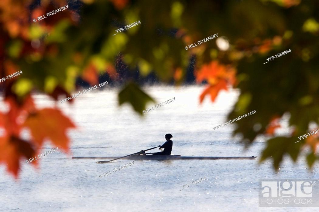 Stock Photo: Rowing in Early Morning Mist - Lake Julian - Asheville, North Carolina USA.