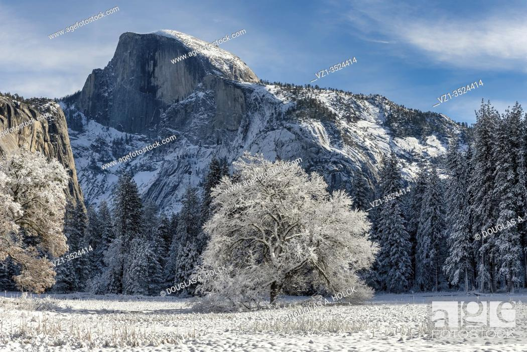 Imagen: Cook's Meadow in Winter Yosemite National Park CA USA World Location.