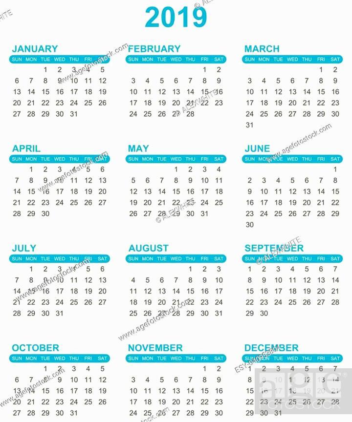 Stock Vector: Simple editable vector calendar for year 2019 sundays first on white background.