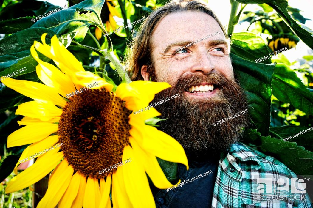 Stock Photo: Caucasian man holding sunflower in garden.