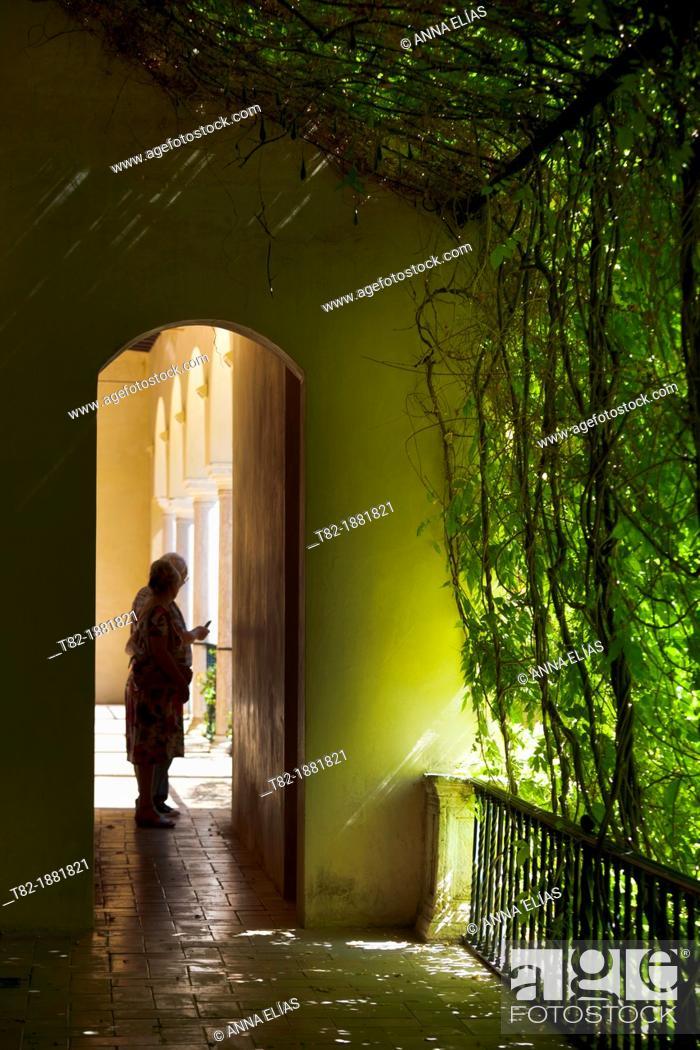 Stock Photo: herb garden silhouette between the Alcazar of Seville, Alcazar, Sevilla, Andalucia, Spain.
