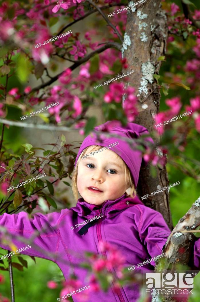 Stock Photo: Girl picking purple flowers.