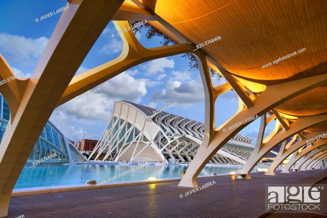 Imagen: CAC. Architect Santiago Calatrava, Ciudad de las Artes y de las Ciencias. City Of Arts and Sciences. Valencia. Comunidad Valenciana. Spain.