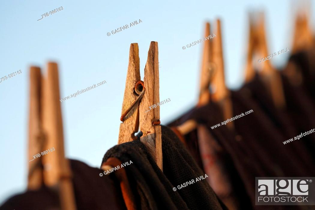 Stock Photo: Washing line and clothes pegs in the morning light.