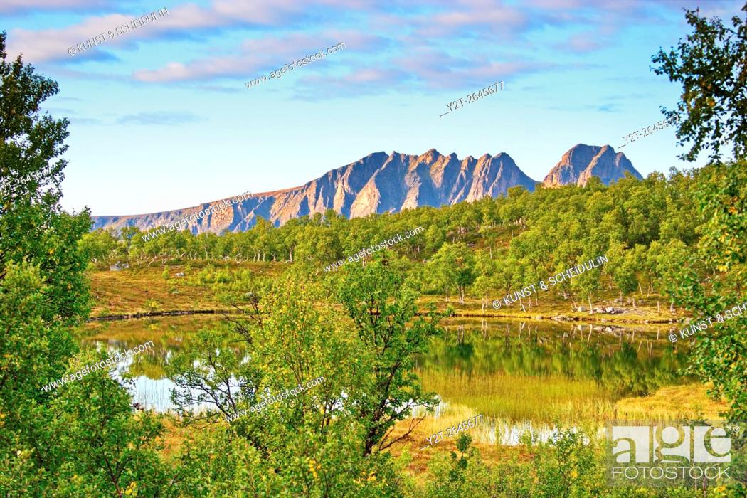 Imagen: Little lake on island Hinnoya. Troms, northern Norway, Europe.
