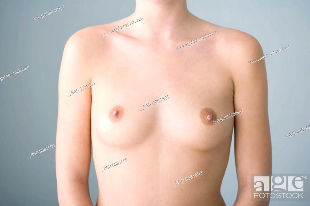 Stock Photo: BREAST Model.