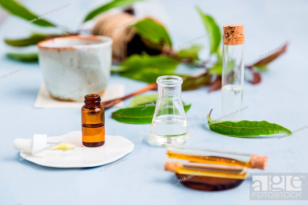 Stock Photo: Essential oil of ravintsara.
