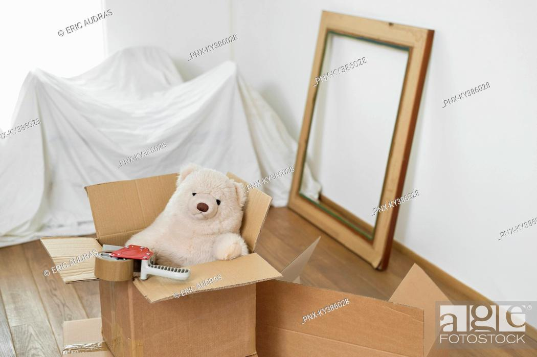 Stock Photo: Teddy bear in a cardboard box.
