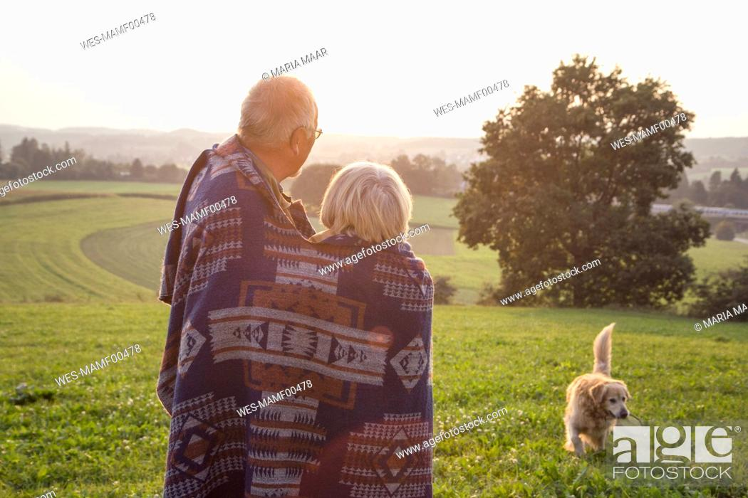 Imagen: Back view of senior couple standing on a meadow at sunset watching their dog.