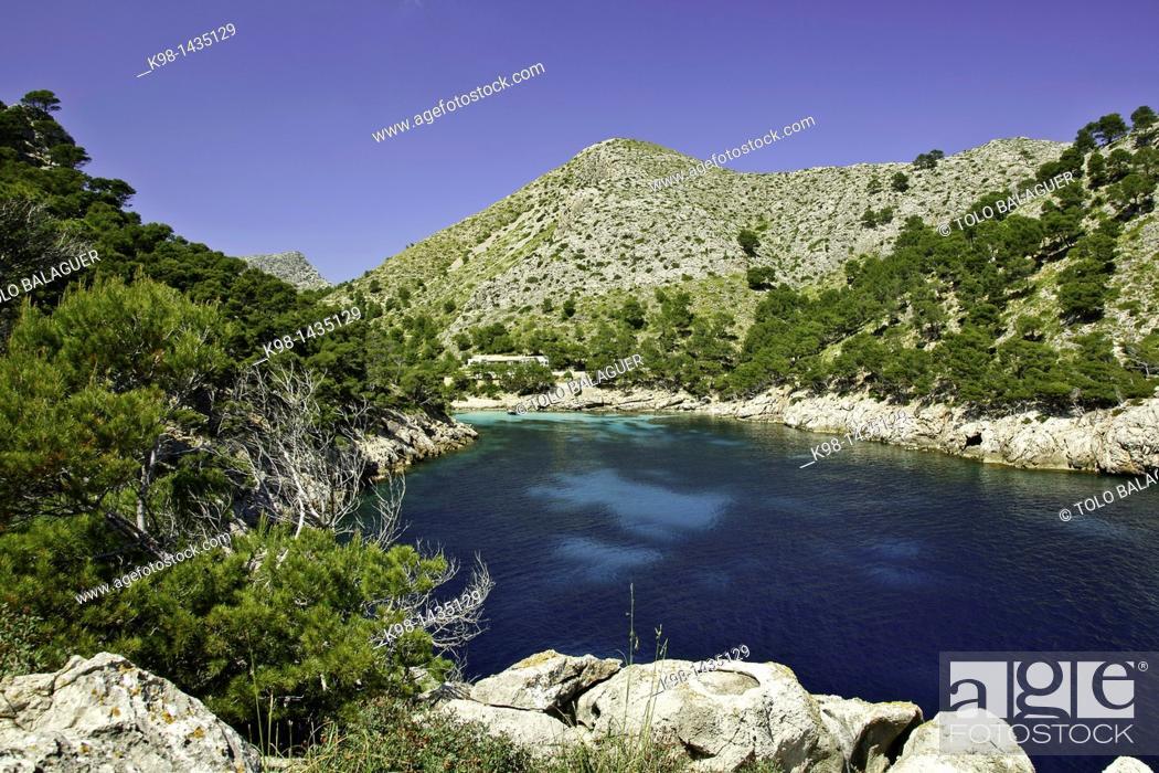 Stock Photo: Cala Murta, Peninsula de Formentor Sierra de Tramuntana Majorca Balearic Islands Spain.