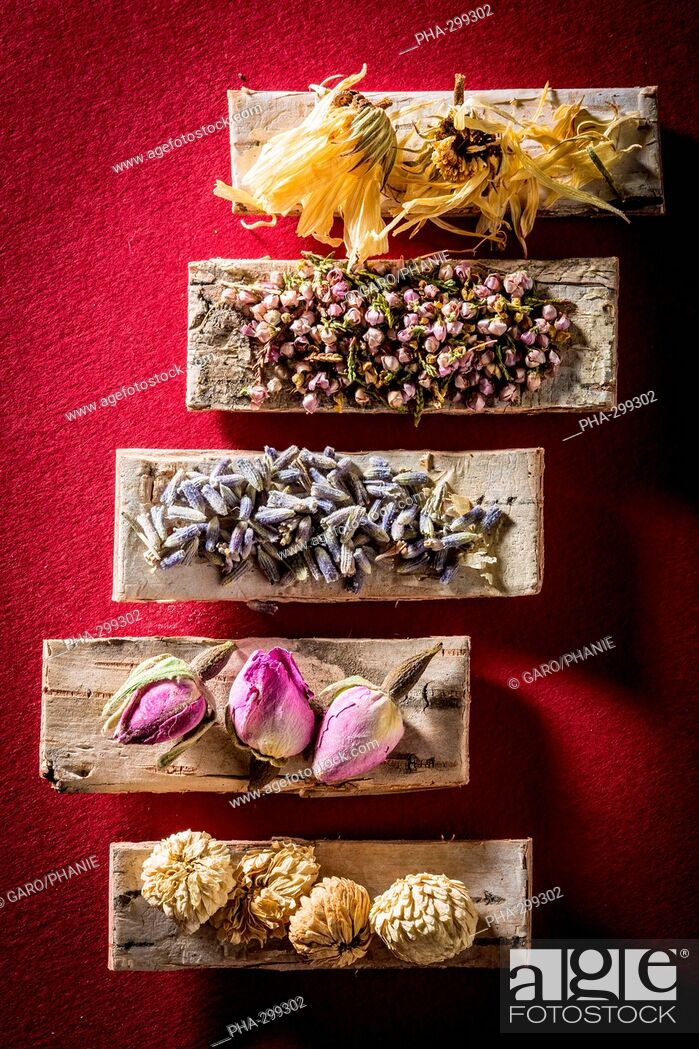 Stock Photo: Medicinal herbs, assortment of dried herbs.