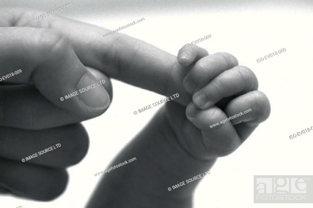 Stock Photo: Baby's hand.