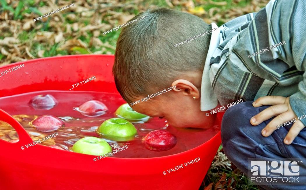 Stock Photo: This cute 5 year old Caucasian boy is bobbing for apples in a large red tub of water with both red and green apples Classic fall game of tradition in American.