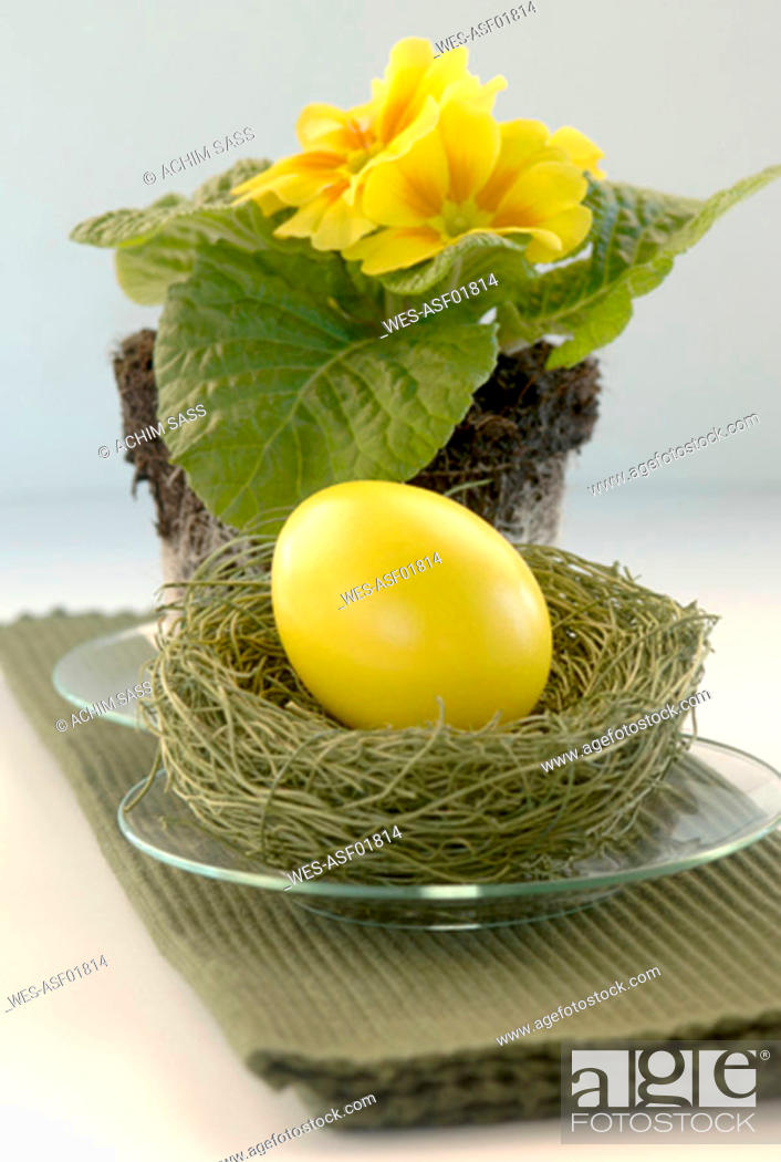 Stock Photo: Yellow Easter egg lying on grass with primrose.
