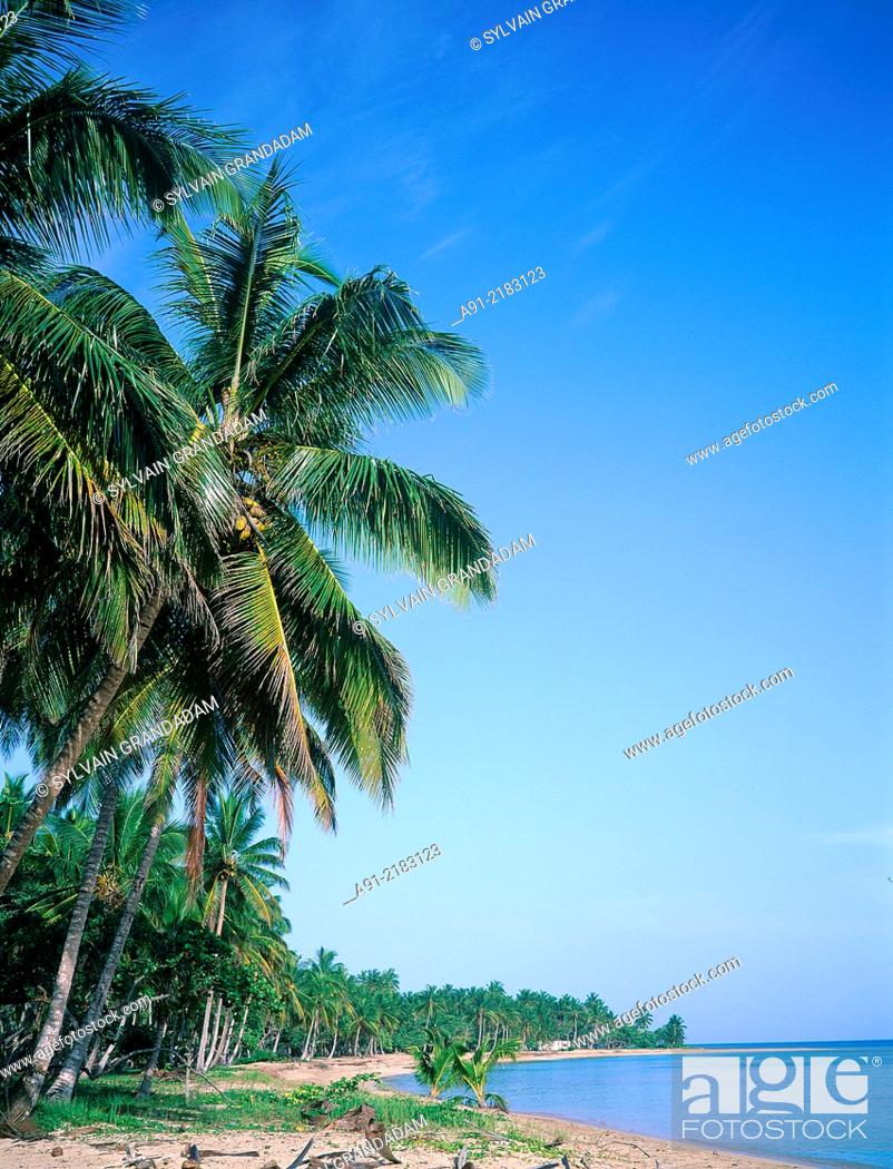 Stock Photo: DOMENICAN REPUBLIC.LAS TERRANAS.EMPTY BEACH.