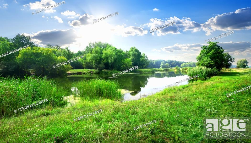 Stock Photo: Calm river in the forest in sunny day.