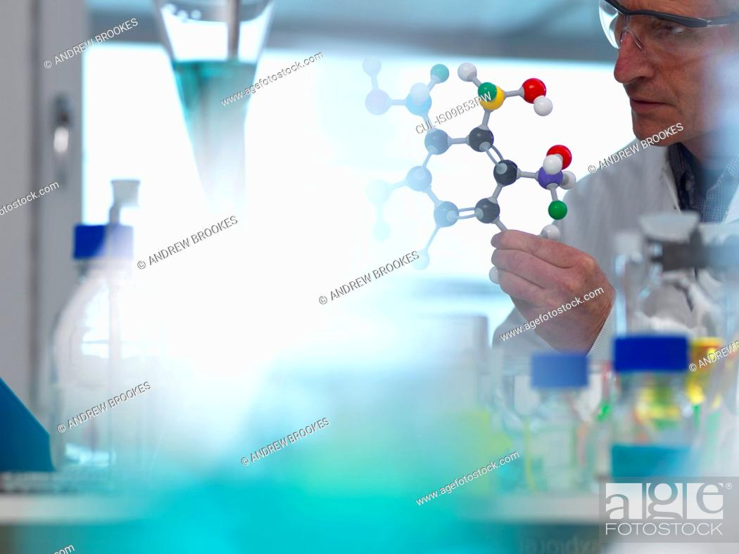 Stock Photo: Researcher using a molecular model to understand a chemical formula in a laboratory.