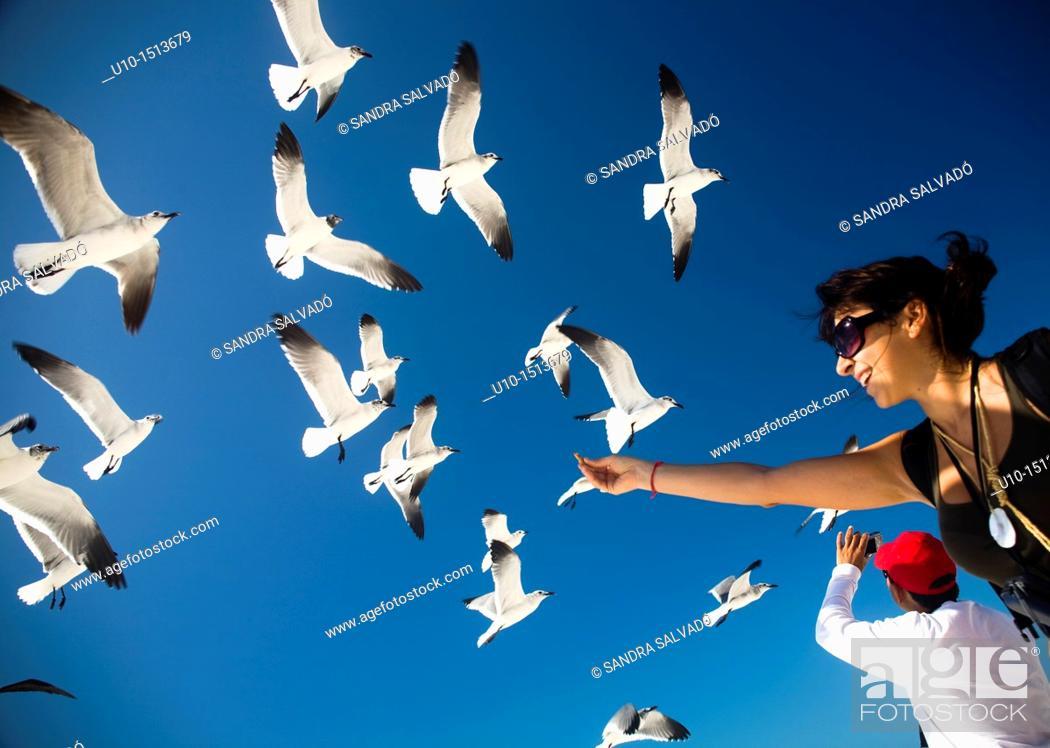 Stock Photo: Holbox island, Mexico.