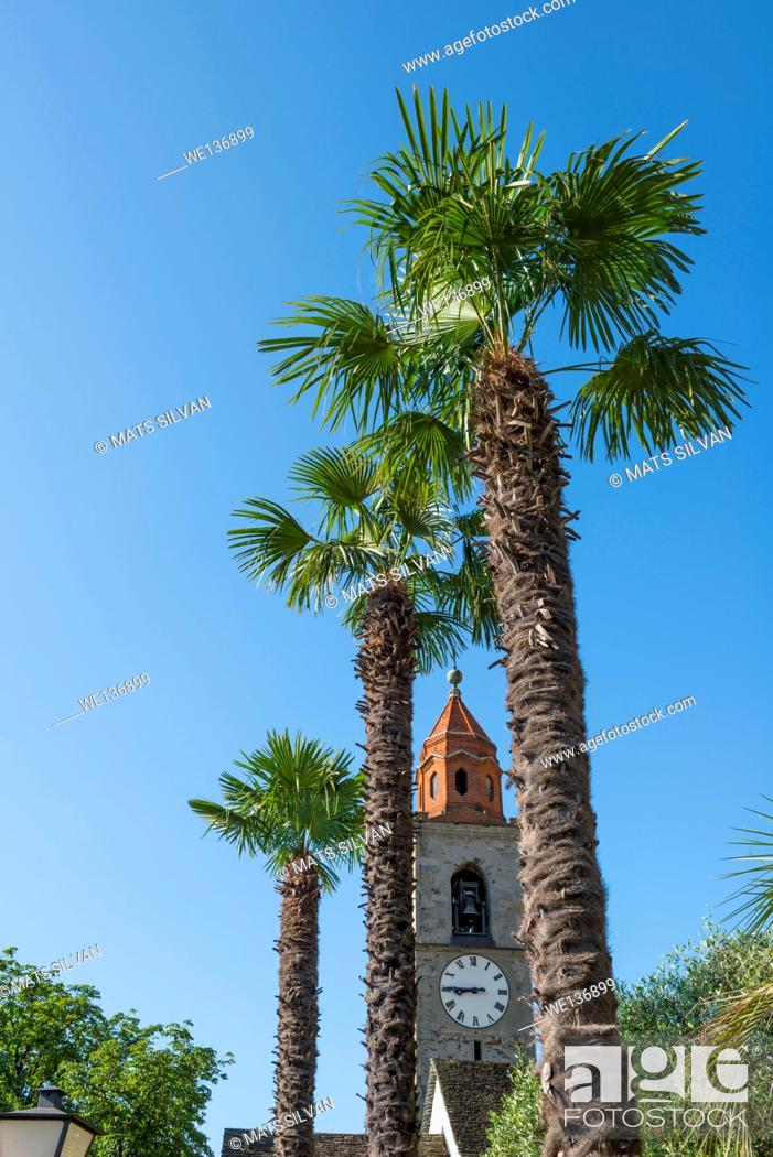 Stock Photo: Church tower and palm trees with blue sky in Ronco sopra Ascona in Ticino, Switzerland.