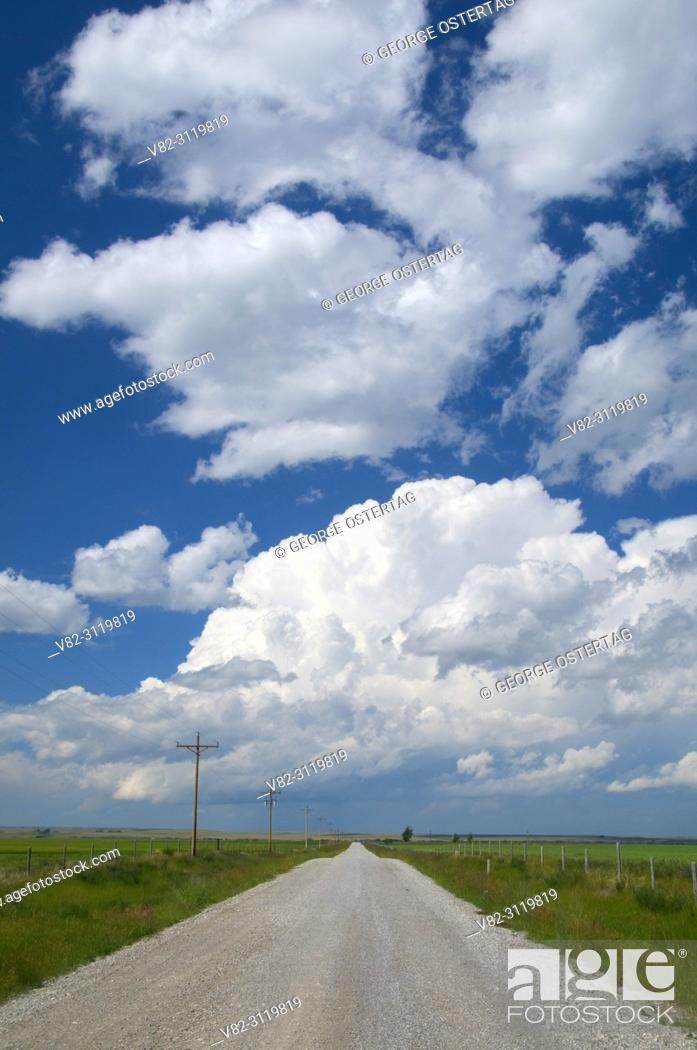 Stock Photo: Farm road, Kingsbury Colony, Pondera County, Montana.
