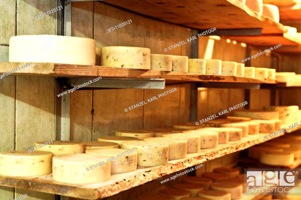 Stock Photo: Mountain cheese on a shelf in a dairy.