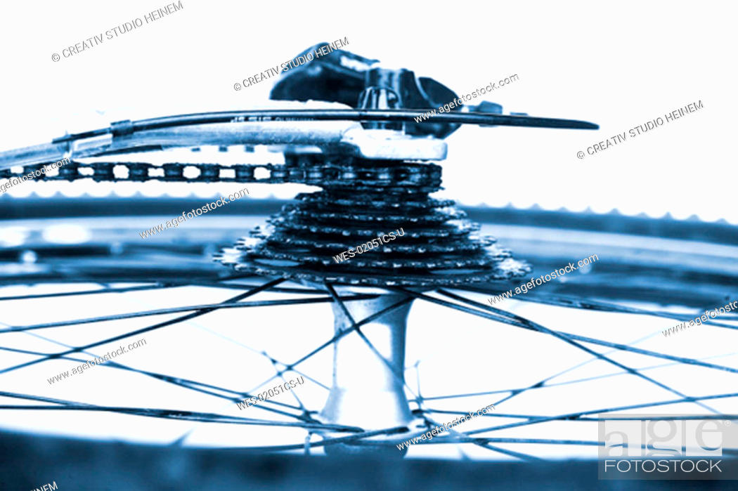 Stock Photo: Wheel and gear of bike, close-up.