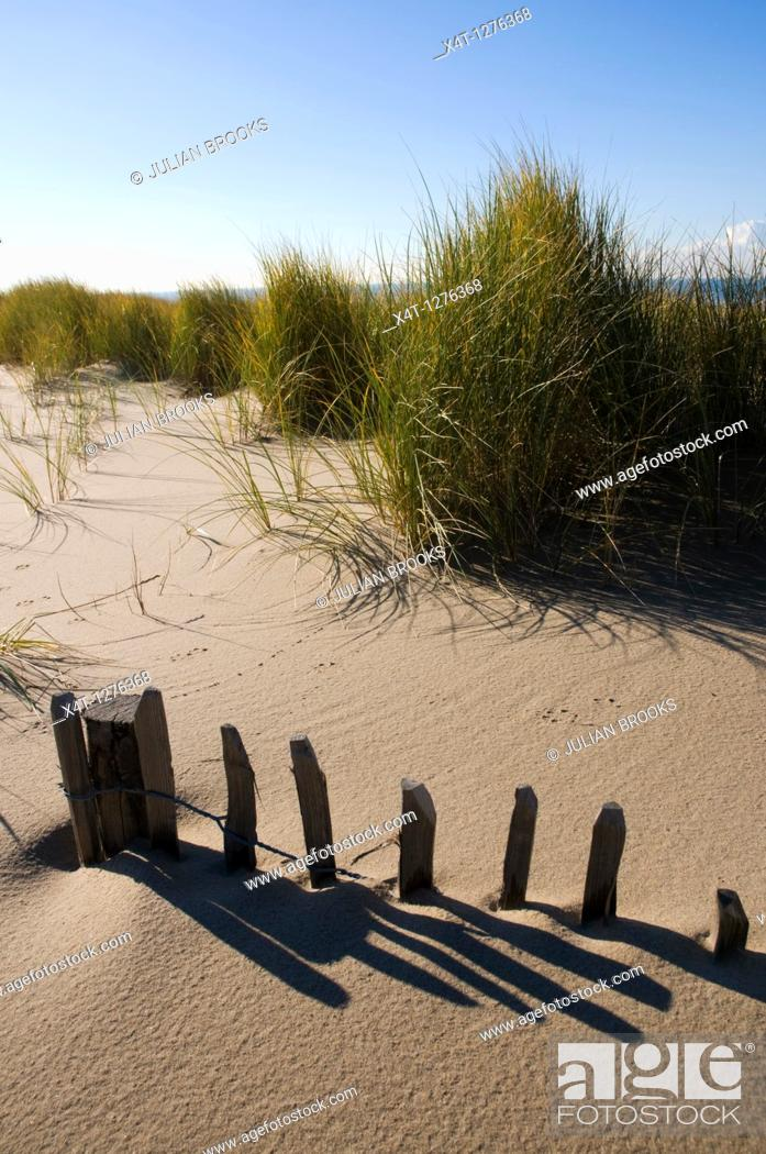Stock Photo: A collapsing fence on a sand dune, buried by sand.