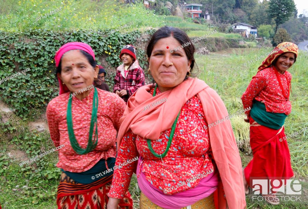 Imagen: Nepal, Pokhara area, Pouderkot Village located on the Annapurna ancient way leading to Tibet and Mustang and offering beyond ricefields terraces stunning view.