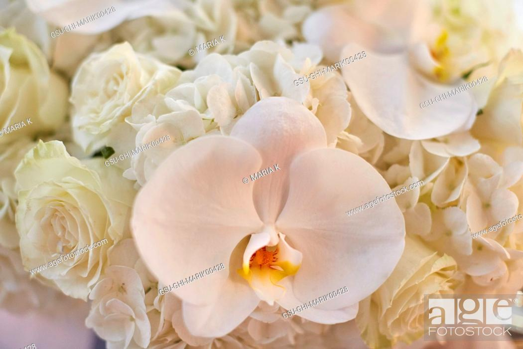 Stock Photo: Wedding Bouquet of White Orchids and Roses, Close-up.